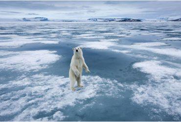 Qu'est-ce que le changement climatique?